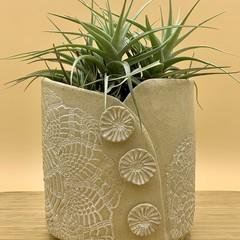Antique Lace Planter