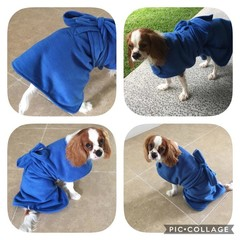 Dog Bathrobe Drying Robe Various Sizes XXS - XXL Double Fleece / Waist Tie