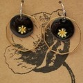 Black Drop Earrings Brass Surround