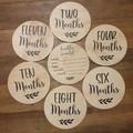 Baby Milestone Discs Arrival Plaque 1-12 months