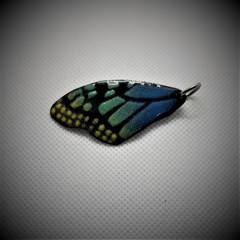 Butterfly Wing  Pendant Blue Green and Yellow