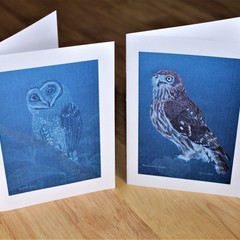 Owl Cards - A6 set 5