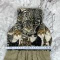 Cats Hanging Hand Towel