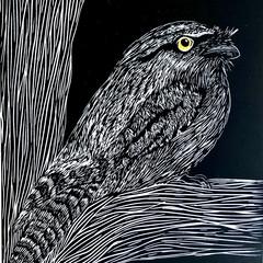 Tawny Frogmouth Linocut Print/ original artwork