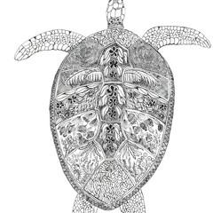 Turtle Journey - A4 Print (unframed)