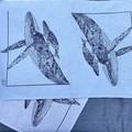Whale Migration - 100% Linen Tea Towels