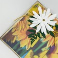 Mother's Day Card - Pleat Fold Daisy Print