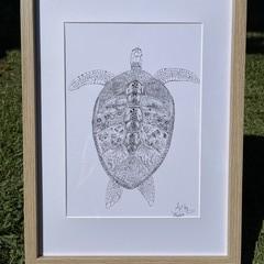 Turtle Journey  - A3 Print (unframed)