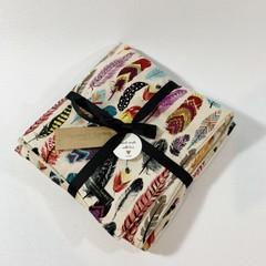 Bassinett / Traveling Minky Baby Blanket - Feathers