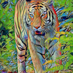 Fearless Tiger Fine Art Print (A3 size or larger)