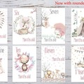 Baby Milestone Cards | Boho Tribal Girls | Pink | Pack of 35 | Printed 300 gsm