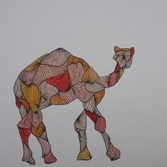 Camel Blank Card