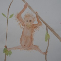Orangutang Hanging about Blank Card
