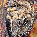 Cute Tawny Frogmouth. Fine Art Print (Limited Edition)