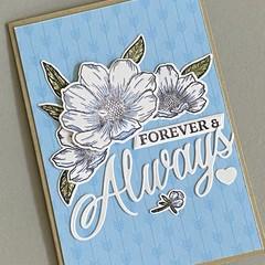 Wedding / Love / Birthday / Anniversary Card