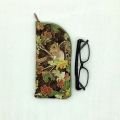 Squirrels Glasses Case