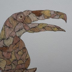 Toucan Blank Card