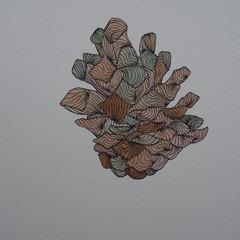 Pinecone (Blank card)