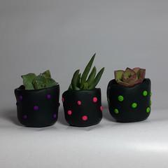 Polymer Clay Tiny Pots set of 3 Bright & black polka dots