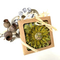 Gift Boxed Bloom Rustic Decoration Keepsake Flower Button Green