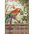 Rice Paper - Decoupage - 1 x A4 Size Sheet - Parrot