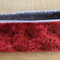 Knitting Needle Project Bag