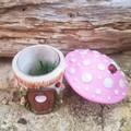 Little Tooth Fairy Mushroom house Trinket Jar