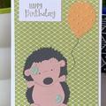 Birthday Handmade Card  - hedgehog