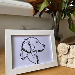 Loyal Labrador Framed Line Drawing