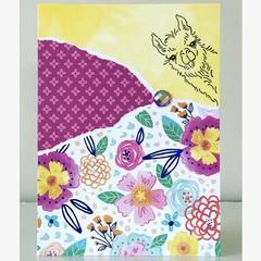 Cheeky llama card