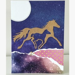 Horse haven card