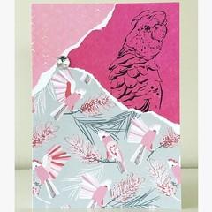 Gorgeous galah card