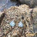Rockpool Soft Blue Sea Star Earrings