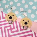 Labrador Resin Earrings Jewellery
