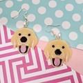 Labrador Resin Earrings Jewellery