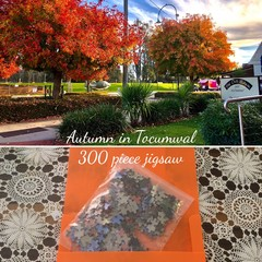 AUTUMN IN TOCUMWAL  300 piece jigsaw A3