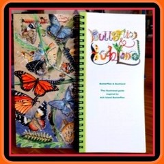 Butterflies and Bushland