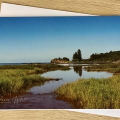 Boulder Beach, Ballina - Free Postage