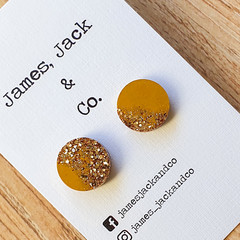 Day to Day Studs (Gold Sparkle)