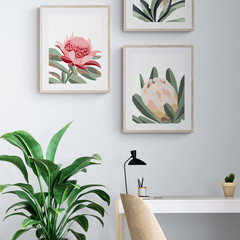 Banksia Print