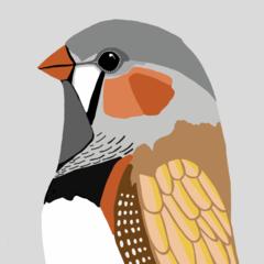 Finch  Print