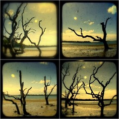 Set of 4 Coastal Landscape Photograpy TtV Prints.