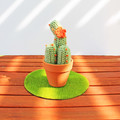 Sage Green Crochet Cactus with Orange Flowers