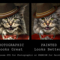 Customised Royal Pet Portrait in Renaissance Costume - Gangster