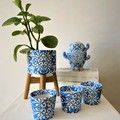 Blue Dreams Decorative Collection