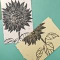 Sunflower Print Set on Handmade Botanical Paper