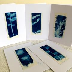 Botanical Notecards, Handmade Cards, Original Cyanotype Cards