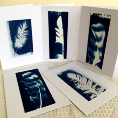 Feather Notecards, Set of 5 Greeting Cards, Cyanotype art