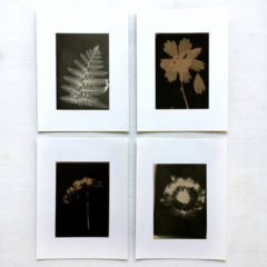 Photogram set of postcards, Handmade Silver Gelatin Photographs