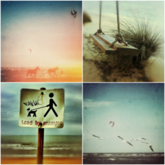 Beach Photography Set of Four 5x5 Seaside Photo Prints